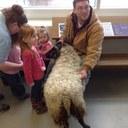 Petting the ram 2.JPG