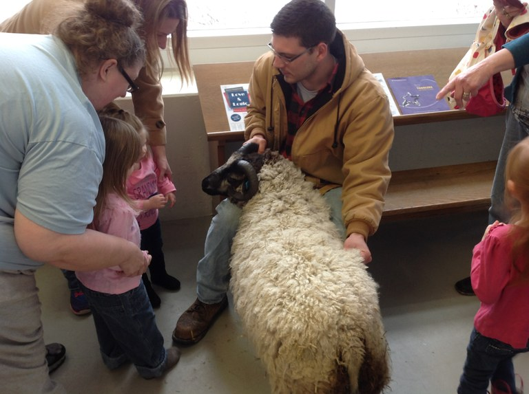 Petting the ram 3.JPG