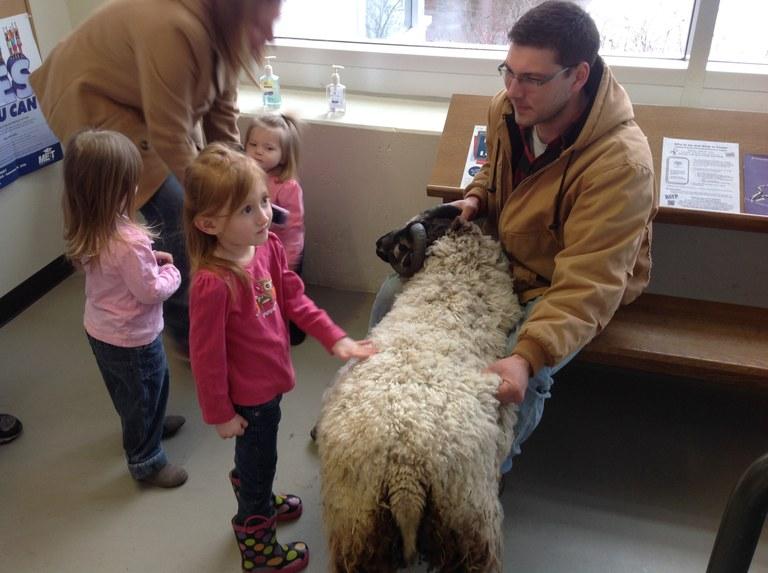 Petting the ram.JPG